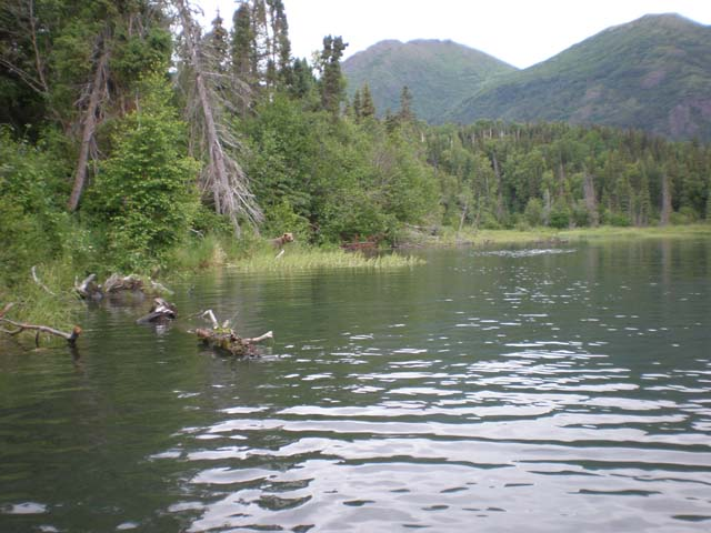 Fishing on Kenai River, Anchorage, Alaska